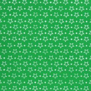 eva-estrela-verde