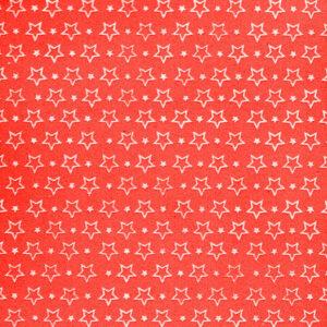 eva-estrela-vermelho