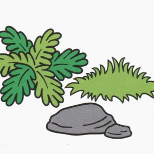 grama-pedra
